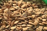 Seeds, Grains, Nuts, Beans